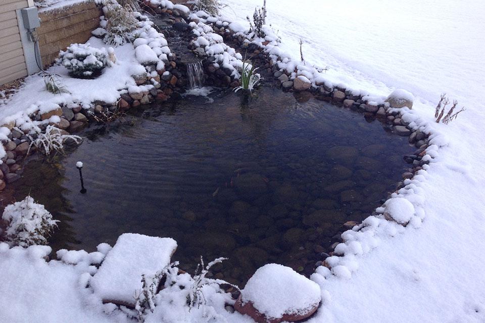 pond-landscape-1